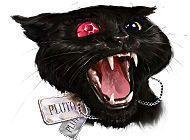 КАРТИНКА Страшные истории. Эдгар Аллан По. Черный кот